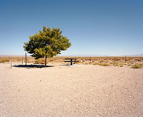 Ryann Ford: Near Millers, Nevada - U.S. 95