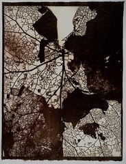 Susannah Hays: Map Detail, 1998