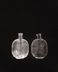 Susannah Hays: Bottles No. 7