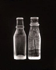 Susannah Hays: Bottles No. 9