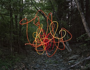 Thomas Jackson: Garden Hose no. 1, Accord, New York, 2013
