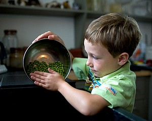 Todd Stewart: Cleaning Peas, 2008