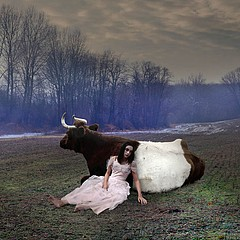 Tom Chambers: Cow Girl, 2006