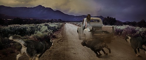 Tom Chambers: Dirt Road Dogs