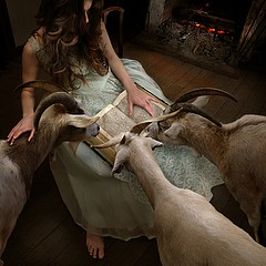 Tom Chambers: The Goatherd, 2009