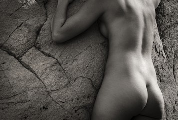 Tony Bonanno: Synergy No. 22, 2013