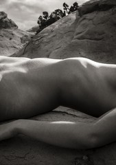 Tony Bonanno: Synergy No. 24, 2013