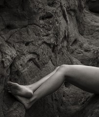Tony Bonanno: Synergy No. 26, 2013