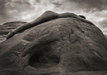 Tony Bonanno: Synergy No. 1, 2013