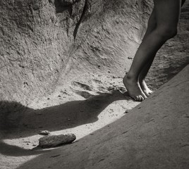 Tony Bonanno: Synergy No. 7, 2013
