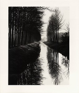 Brett Weston: Master Photographer