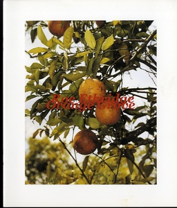 Roe Etheridge: Orange Grove (SIGNED)