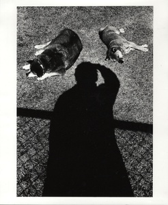 Daido Moriyama: Memories of a Dog (LIMITED EDITION with PRINT 1/50!)
