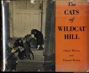 Edward Weston & Charis Wilson: The Cats of Wildcat Hill (In Rare Dust Jacket!)