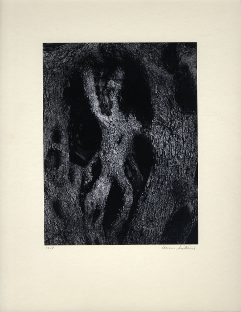 Aaron Siskind: Photographs (SIGNED with Print!!)