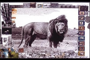 Peter Beard. Art Edition
