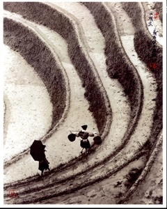 Don Hong-Oai: Photographic Memories (Limited Edition with Print)