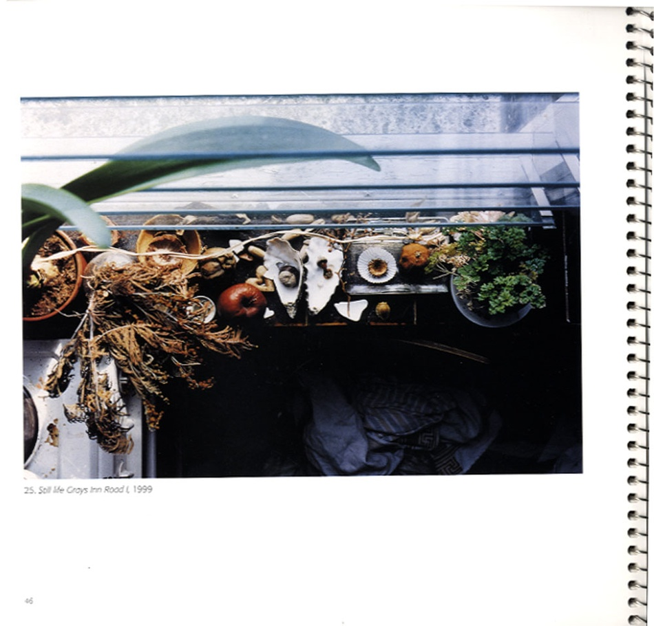 Wolfgang Tillmans: Still Life (Scarce 2002 Catalogue)