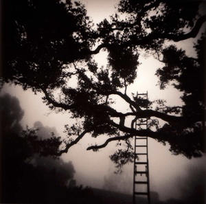 Michael Kenna: Boarding School + Montecito Garden + Heiden Hotel (One Picture Books Nos. 21,41 & 56)