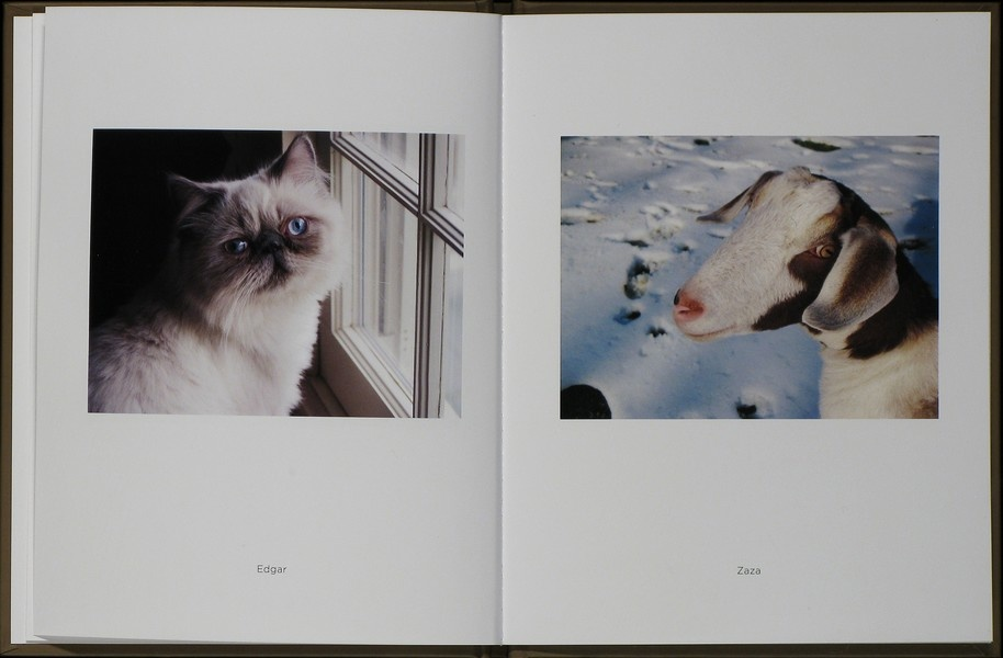 Stephen Shore: Merced River + Pet Pictures (One Picture Book Nos. 43 & 73)