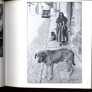 Elliot Erwitt: Four Books (ALL SIGNED)