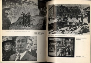 El Libro negro del terror nazi en Europa (The Black Book of Nazi Terror in Europe)