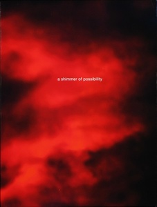 Paul Graham: a shimmer of possibility (SIGNED)