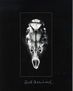Ruth Bernhard: Gift of the Commonplace (Limited Edition with Print)
