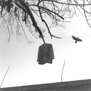 Graciela Iturbide: Pajaros (Limted Edition with Print)