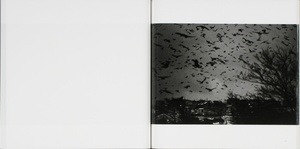 Masahisa Fukase: The Solitude of Ravens (2008 Reprint)