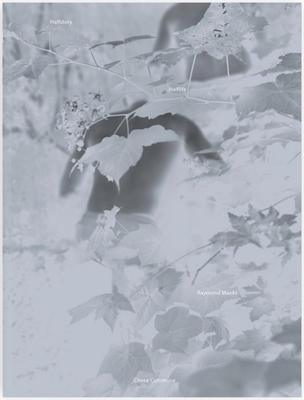 Halfstory Halflife - SIGNED: Raymond Meeks