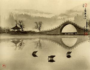 Image © Don Hong-Oai
