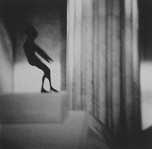 Image © Carol Munder