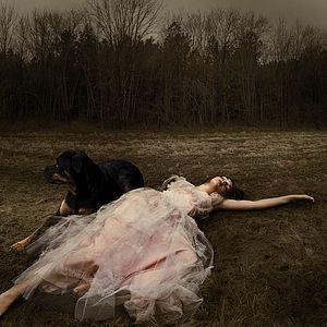 Image © Tom Chambers