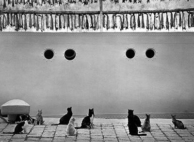 ©Pentti Sammallahti