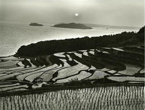 © Haruto Maeda