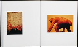 from the book Kiki Smith: Photographs