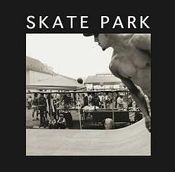 from the book Skate Park