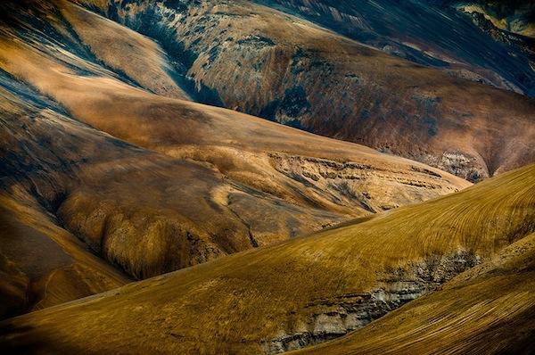© Luigi Fieni