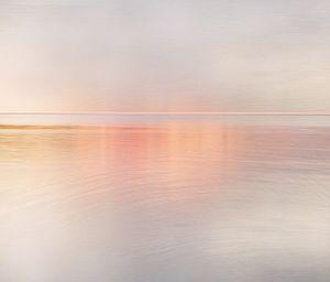 Image © Gaylen Morgan