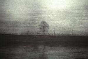 Image © Mihai Mangiulea
