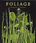 Harold Feinstein: Foliage