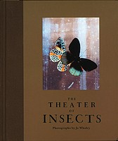 Jo Whaley: The Theater of Insects