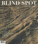 : Blind Spot: Twenty Nine