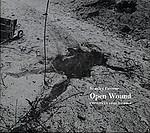 Stanley Greene: Open Wound