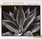 Brett Weston: Brett Weston: Nature's Pattern