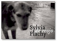 Sylvia Plachy: Out of the Corner of My Eye