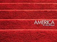 Zoe Strauss: America