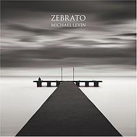 Michael Levin: Zebrato