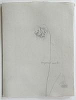 Raymond Meeks: Carousel